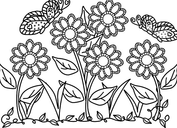 600x435 Butterfly With Flower In The Garden Colouring Pages Color Luna