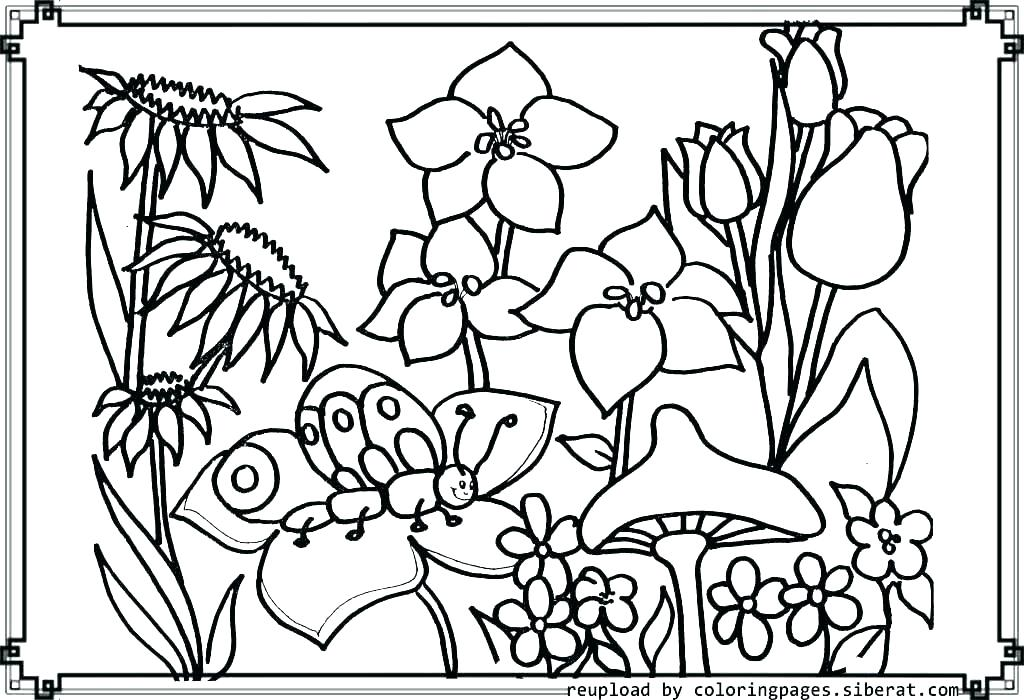 1024x700 Coloring Pages Garden Flower Garden Coloring Pages Garden Coloring