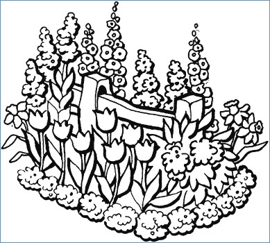389x350 Flower Garden Coloring Pages Printable