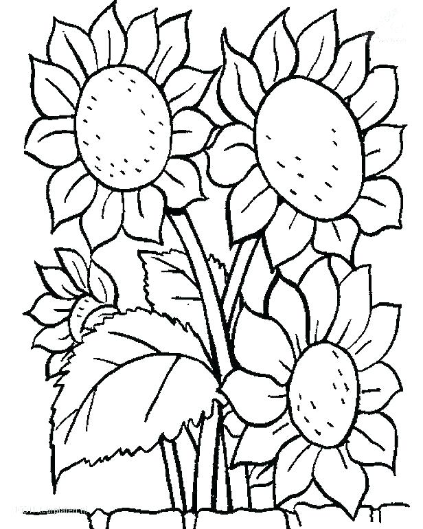 616x770 Garden Coloring Pages Free Download Best Garden Coloring Pages