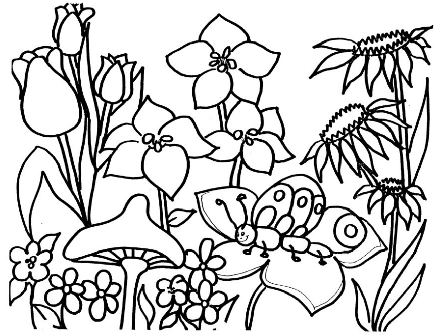 869x662 Printable Flower Garden Coloring Page