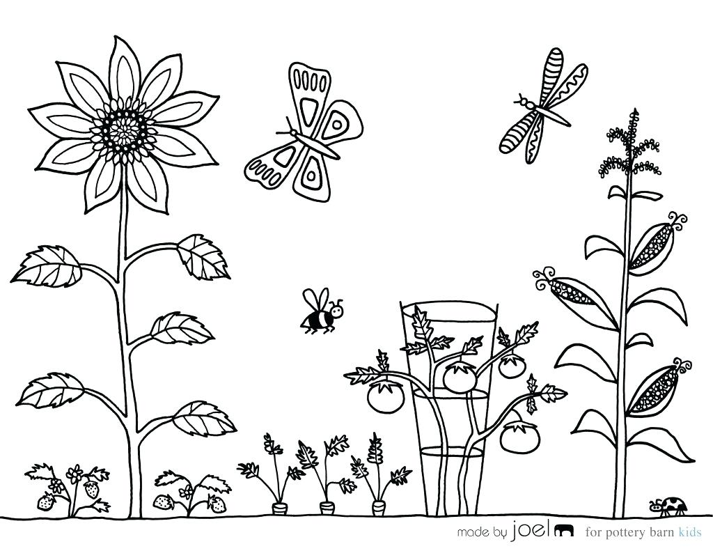 1024x791 Vegetable Garden Coloring Sheet Made