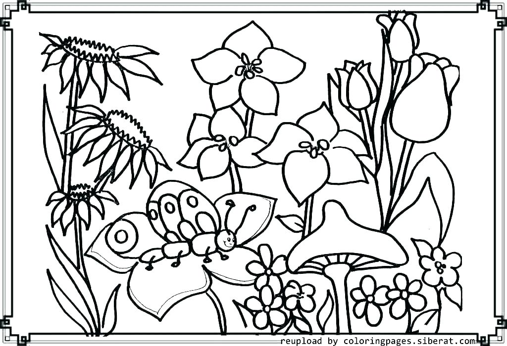 1024x700 Flower Garden Coloring Pages