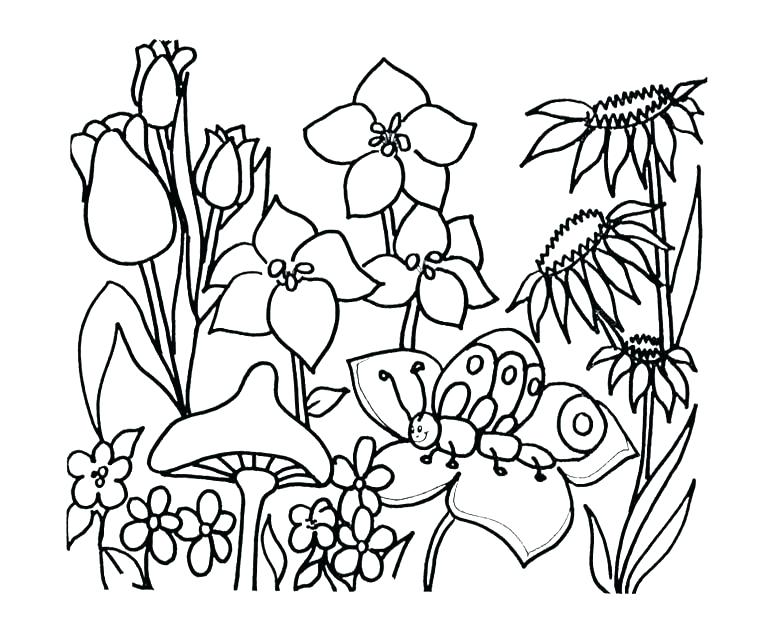 780x644 Coloring Pages Flower Luxury Flower Garden Coloring Page Crayola