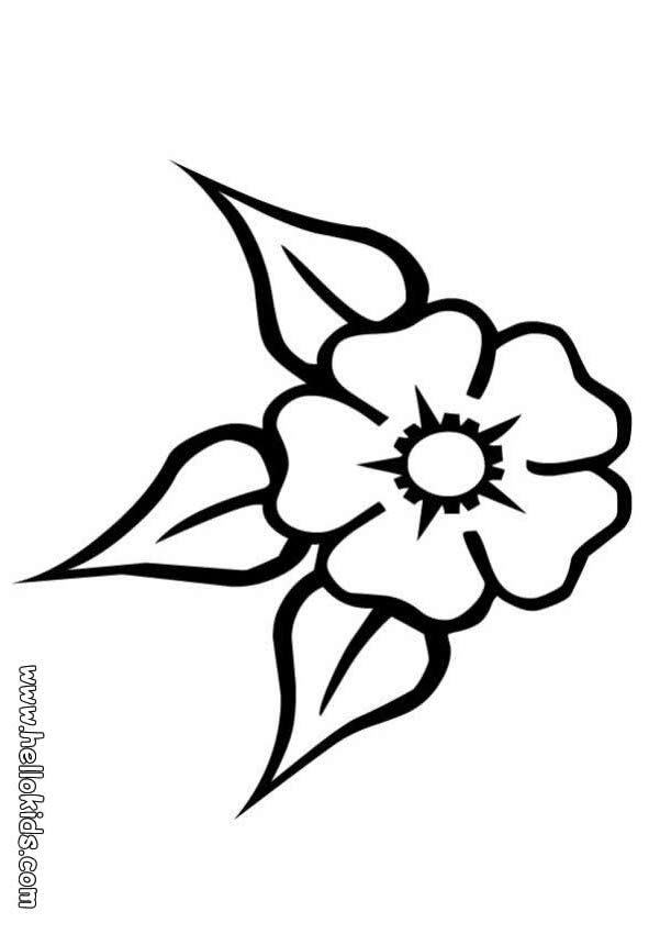 Flower Images Coloring Pages