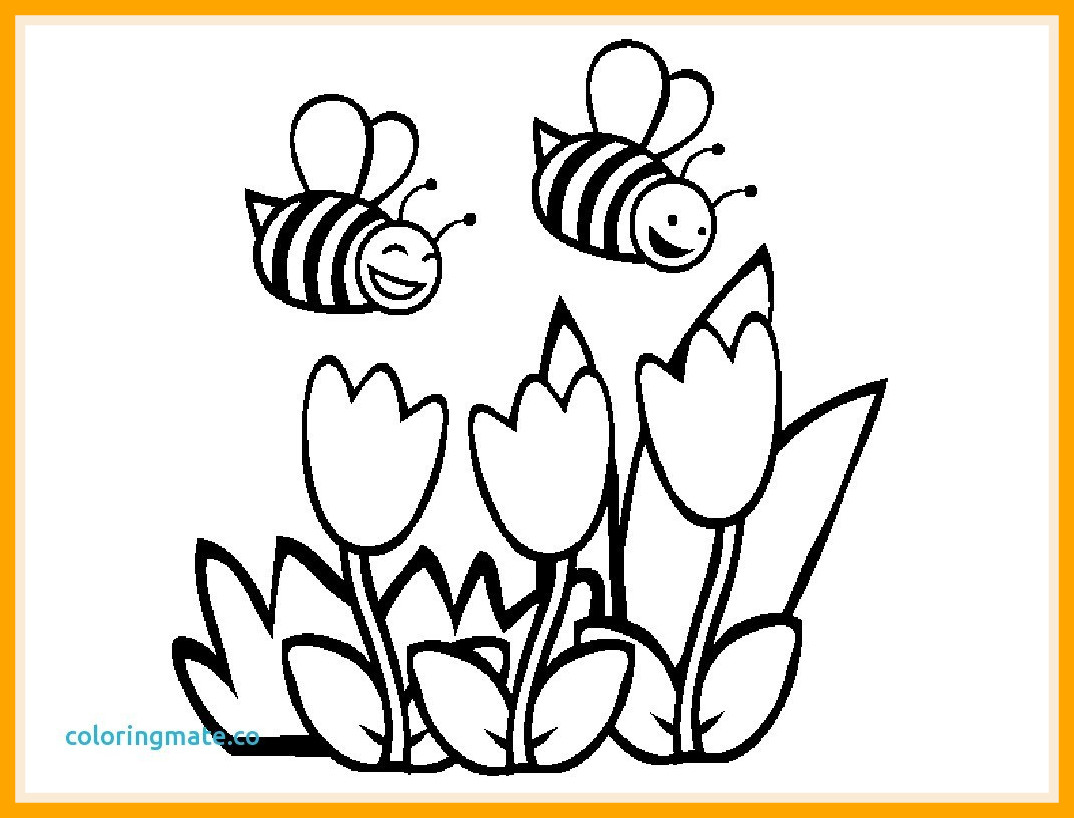 Flower In A Pot Coloring Page