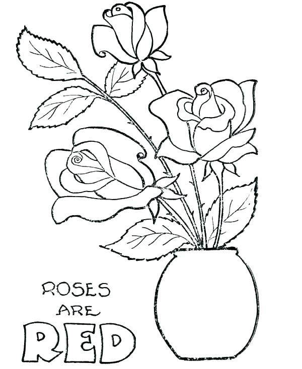 600x734 Poppy Coloring Pages Flower Pot Colouring Pages Poppy Coloring