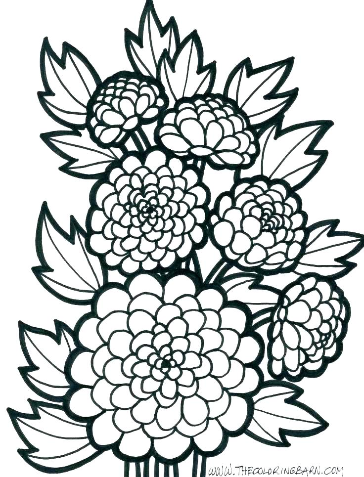 736x965 Pattern Coloring Page