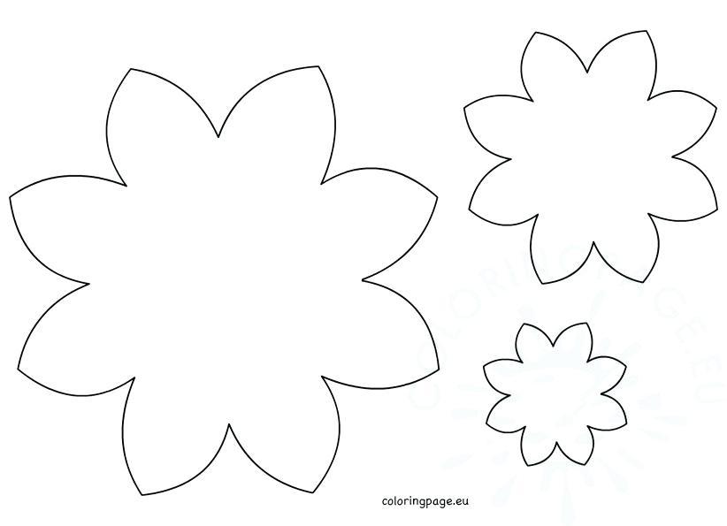 822x595 Daisy Petal Coloring Page Flower Daisy Petal Daisy Clover Petal
