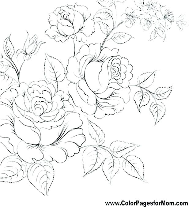 640x676 Beautiful Flower Coloring Pictures Printable Coloring Pages