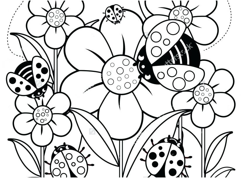827x609 Big Coloring Page Free Flowers Coloring Pages Big Flower Coloring