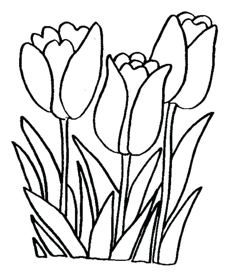 736x892 Printable Coloring Pages Of Flowers Flower Coloring Pages