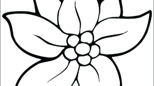 500x280 Flowers Printable Coloring Pages