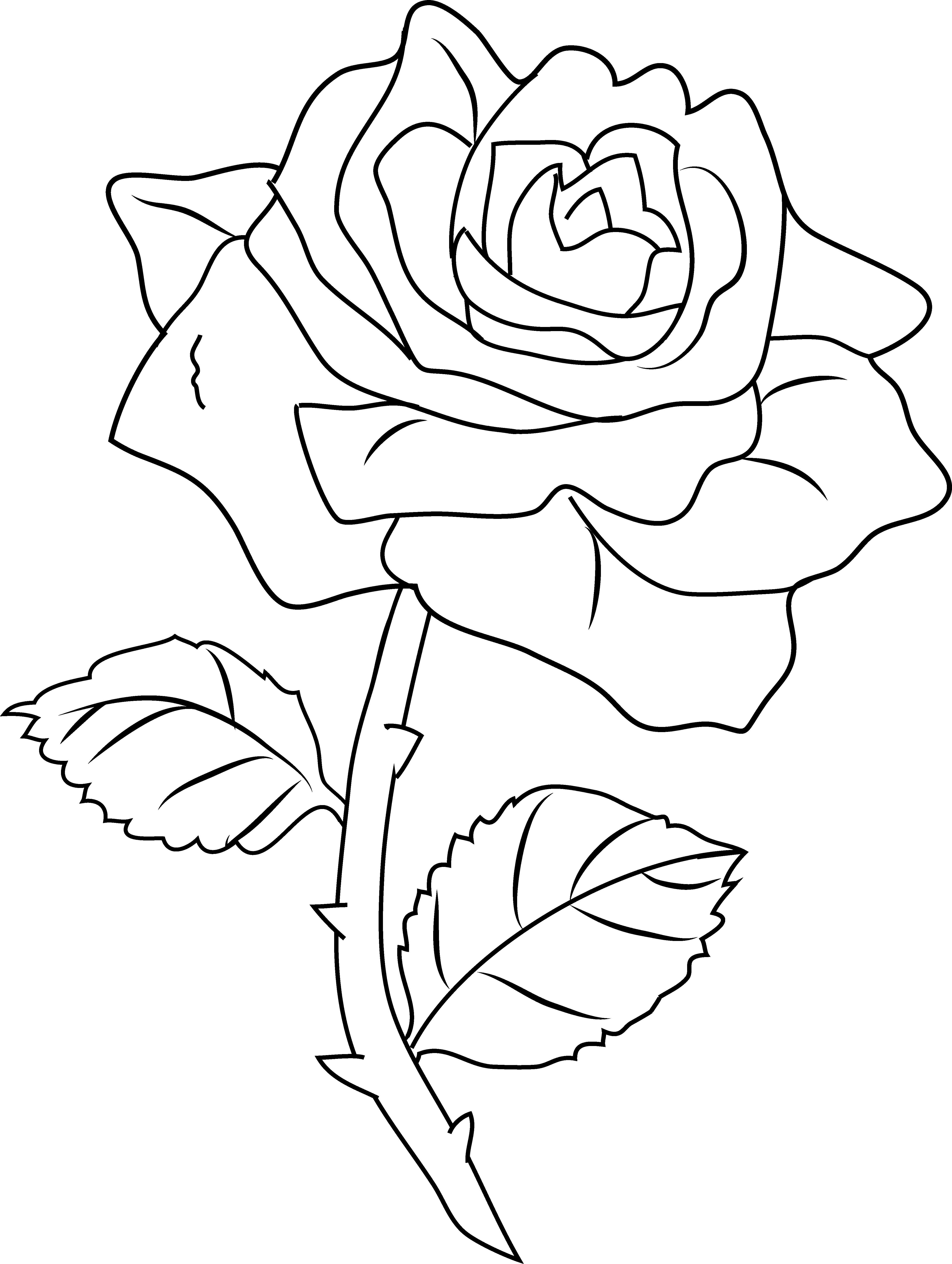 Flower Rose Coloring Pages