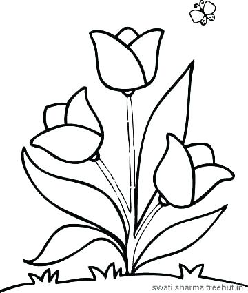 360x425 Elegant Free Flower Coloring Pages Or Easy Flower Coloring Pages