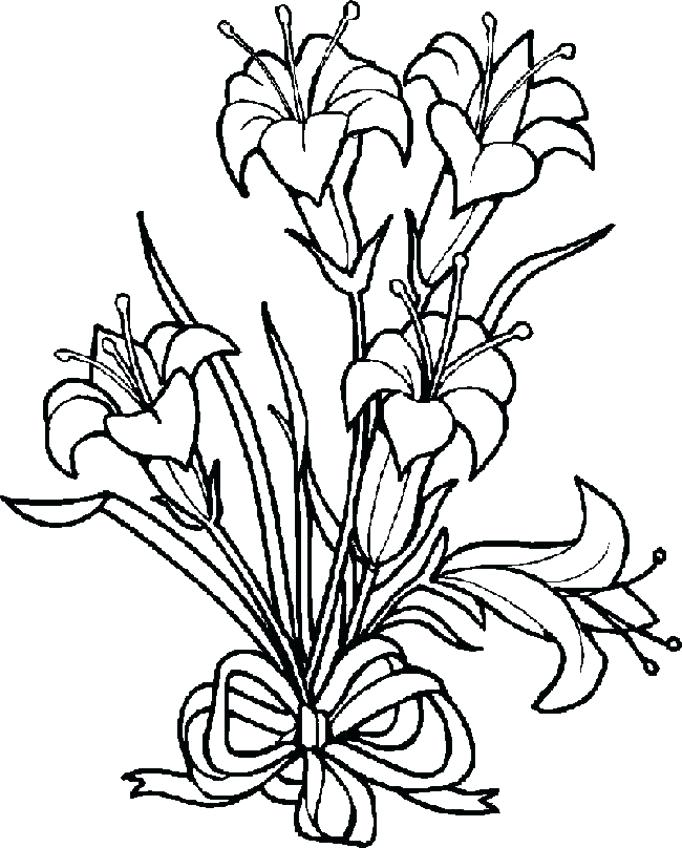 682x848 Luxury Flower Coloring Pages Pdf And Flower Coloring Pages Free