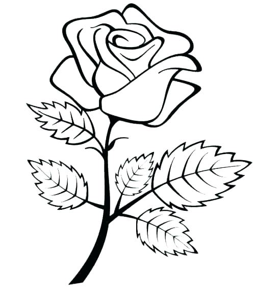 500x594 Flowers And Hearts Coloring Pages Rose Flower Coloring Pages