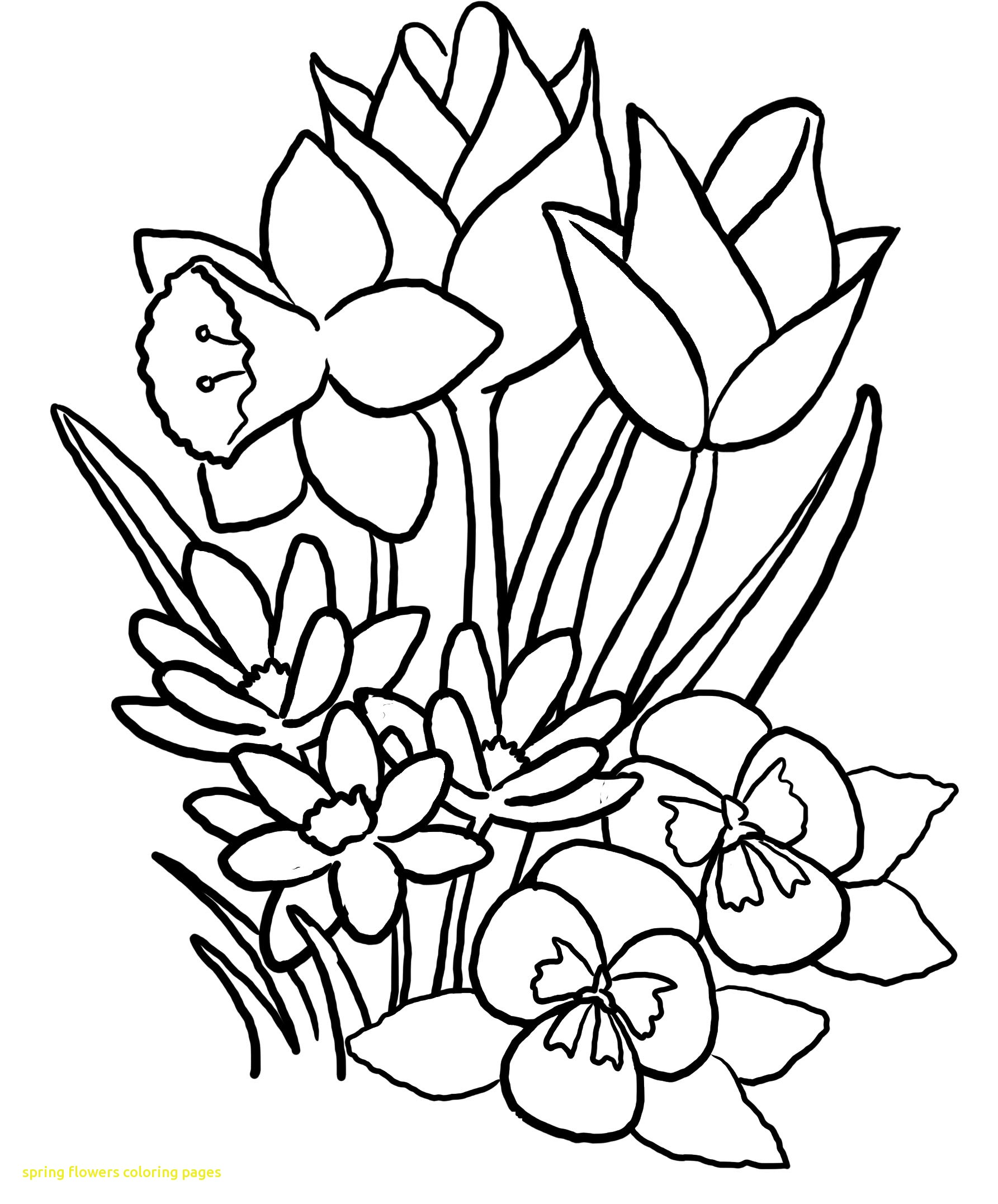1785x2152 Spring Flower Coloring Pages