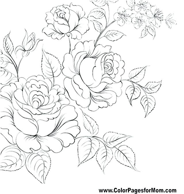640x676 Flower Coloring Pages For Adults