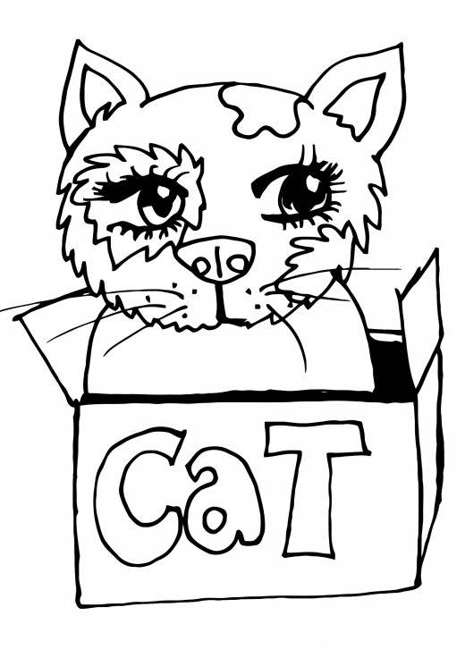 Fluffy Cat Coloring Pages