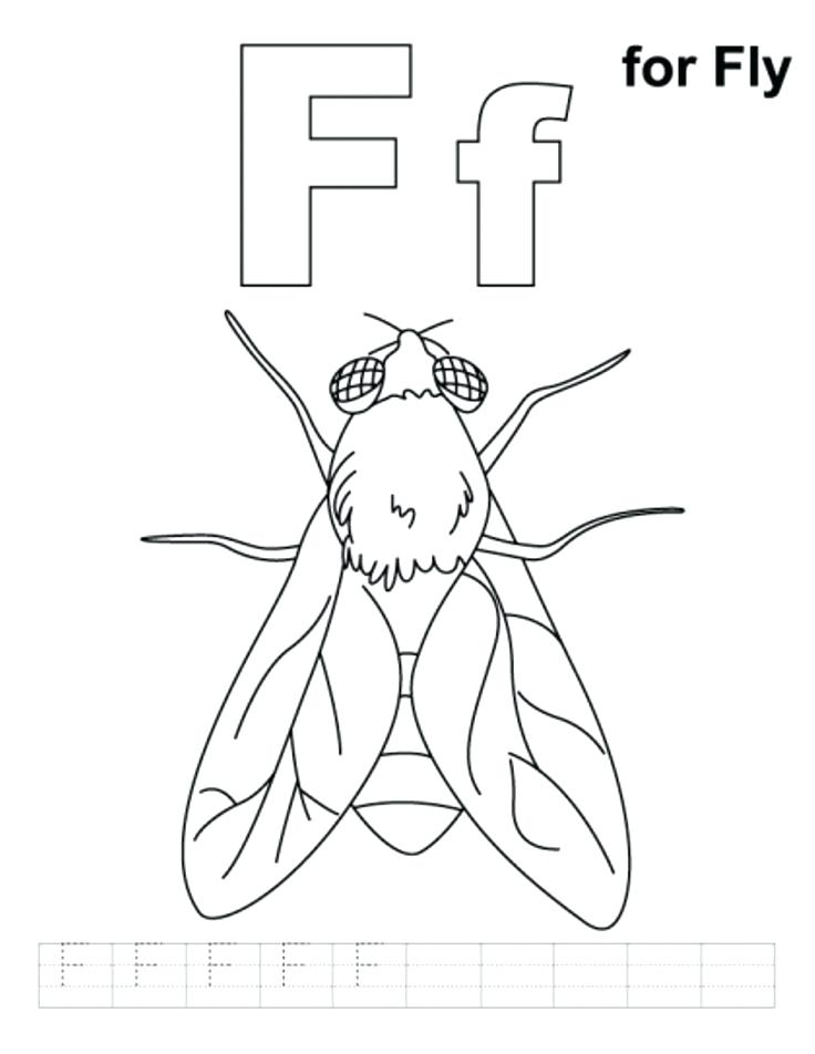 736x952 Fly Coloring Page F For Fly Alphabet Coloring Pages Free Free Fly