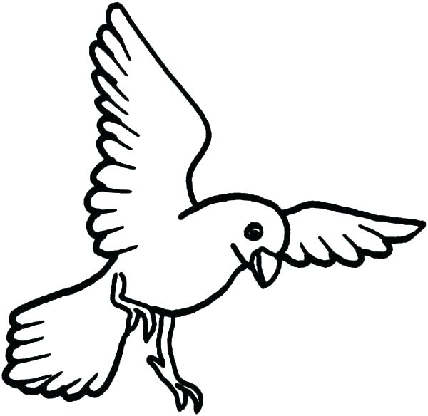 Flying Bird Coloring Pages At Getdrawings Com Free For