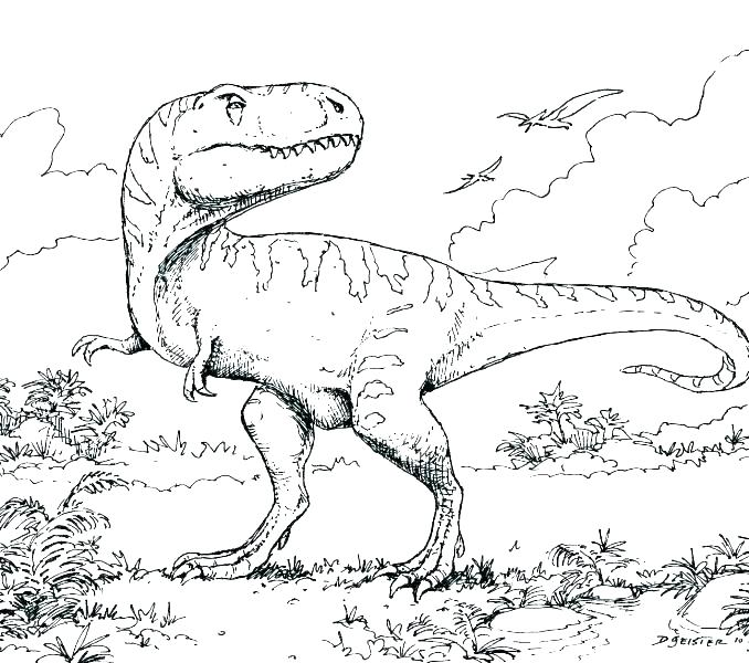 678x600 Dinosour Coloring Pages Flying Dinosaur Coloring Pages Dinosaur