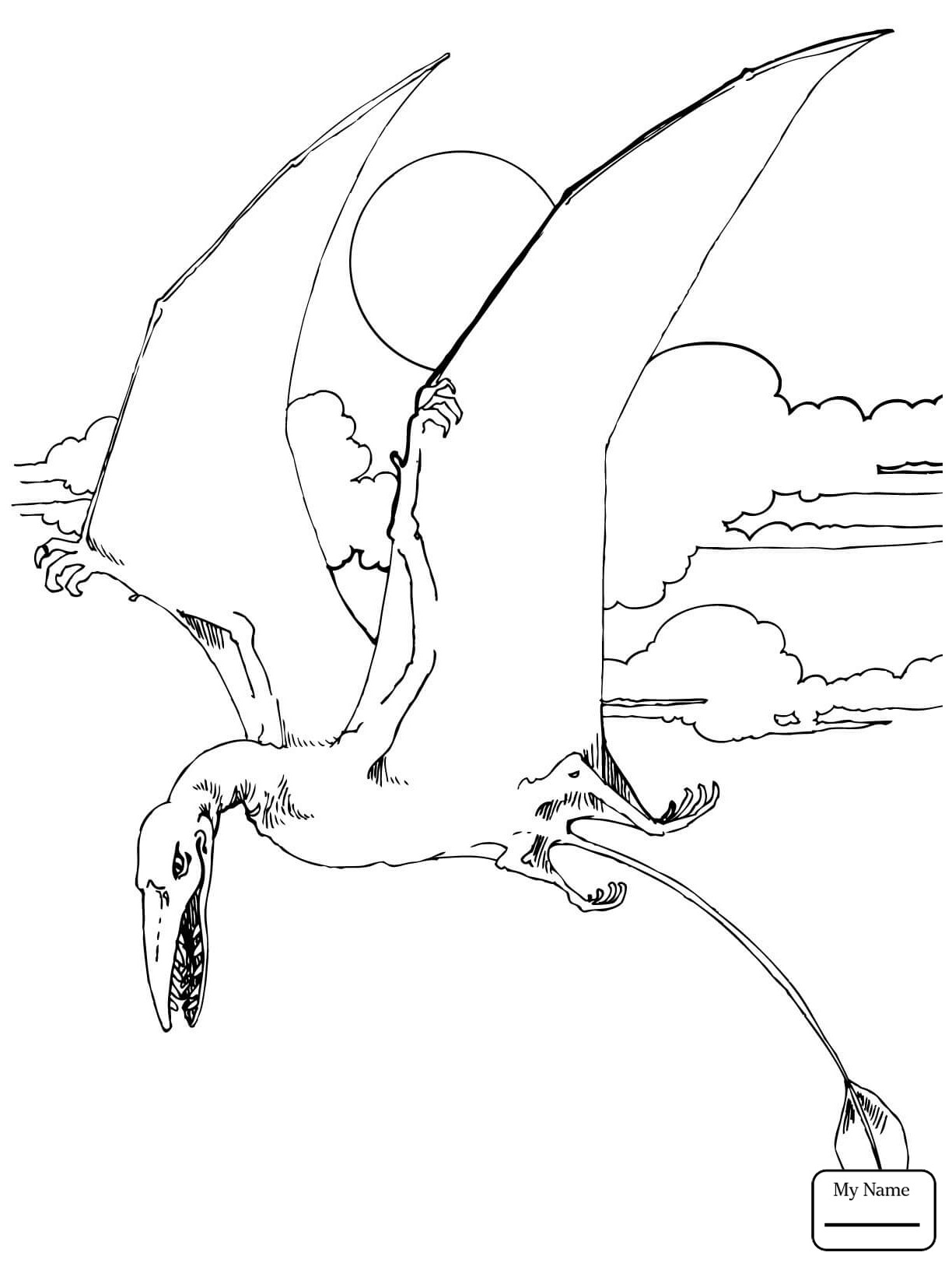 1224x1632 Pterodactyl Dinosaur Coloring Page Free Printable Pages Brilliant