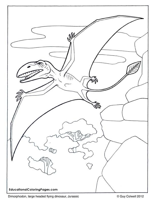 612x792 Zoology Flying Dimorphodon Coloring, Flying Dinosaur Coloring