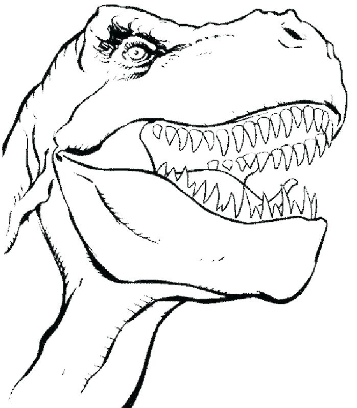 699x800 Dinosaur Coloring Pages Dinosaur Coloring Pages Free T Coloring