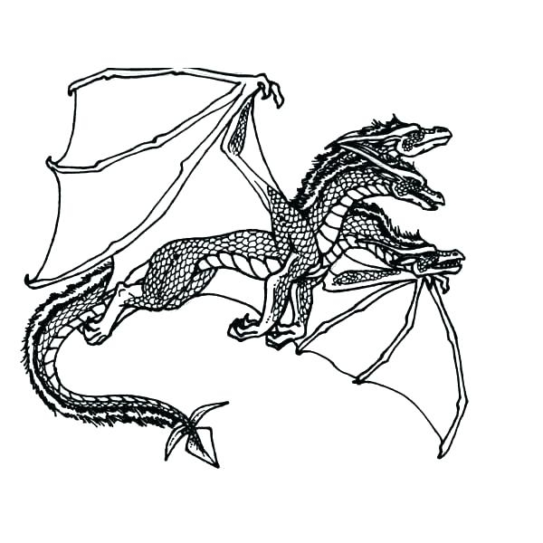 600x600 Free Dragon Coloring Pages Free Dragon Coloring Pages Puff