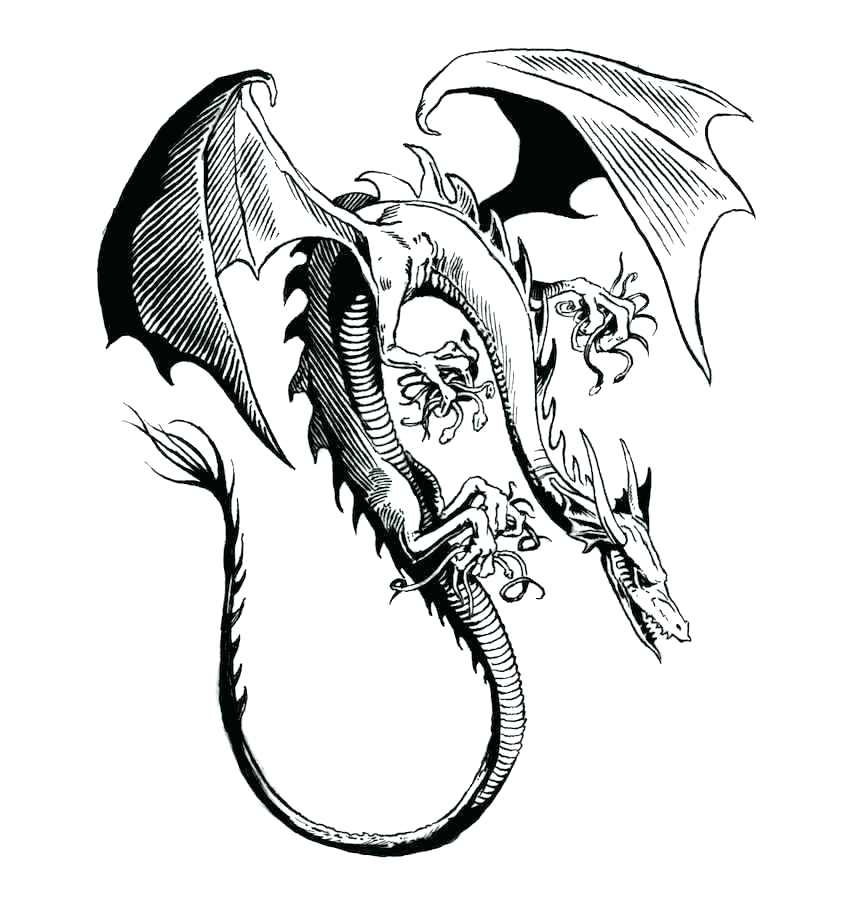 846x920 Cool Dragon Coloring Pages Printable Coloring Pages Collection