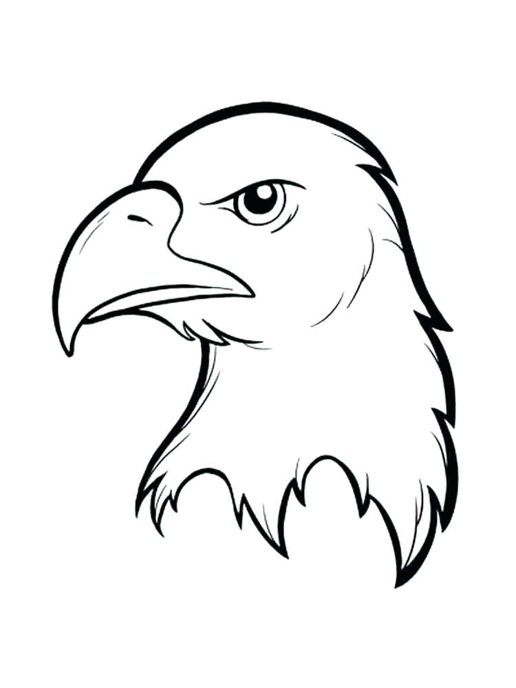 750x1000 Coloring Pages Of Eagles Coloring Page Of An Eagle Eagle Birds