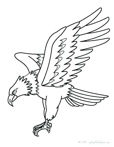 364x470 Coloring Pages Of Eagles Eagle Coloring Book Plus Eagle Color Page