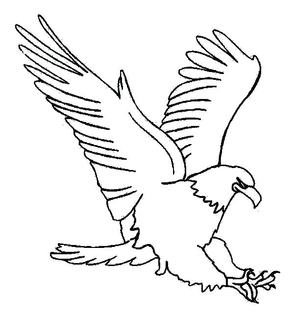 600x647 Elegant Coloring Page Of An Eagle For Coloring Pages Eagles Eagle