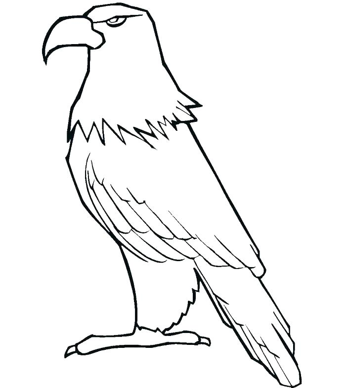 700x783 Harpy Eagle Coloring Page Harpy Eagle Kid Harpy Eagle Coloring