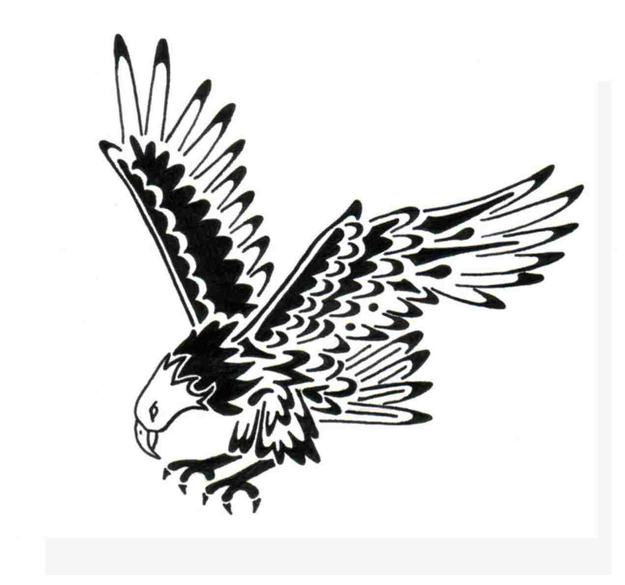 1271x1188 Outstanding Soaring Eagle Coloring Page Frieze