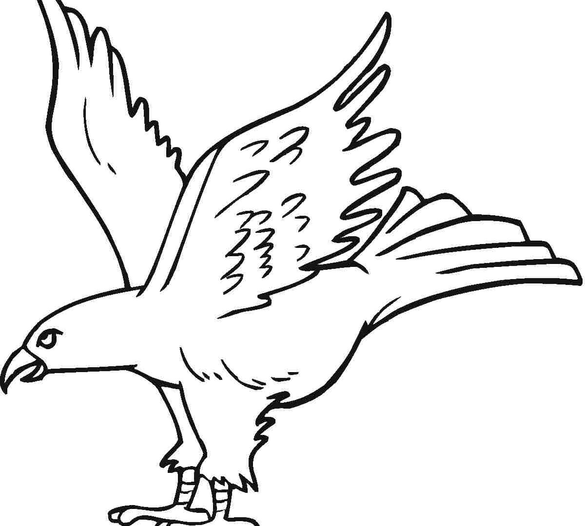 1200x1080 Unique Eagle Coloring Pages Realistic Page Printable Animals