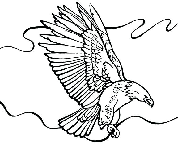 576x468 Bald Eagle Coloring Page Free Printable Coloring Pages Bald Eagle