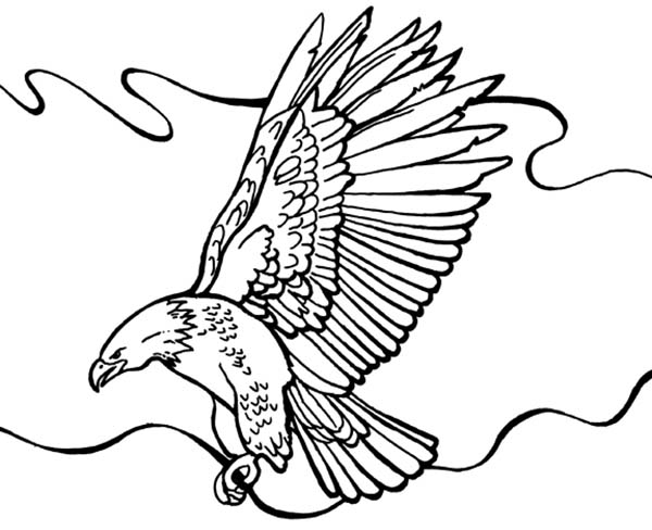 600x488 Bald Eagle Flying Around Coloring Page