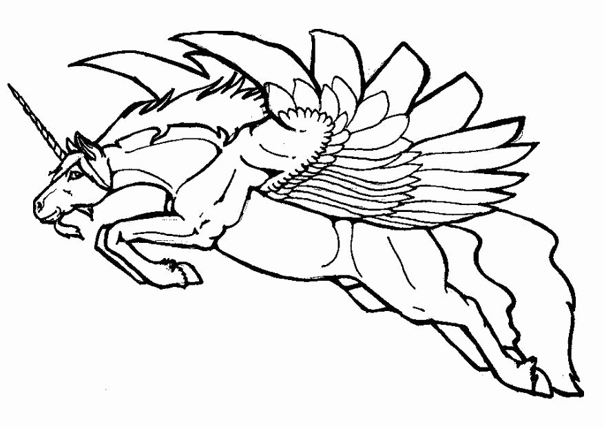 877x622 Flying Fairy Coloring Pages Images Coloring Page Flying Unicorn