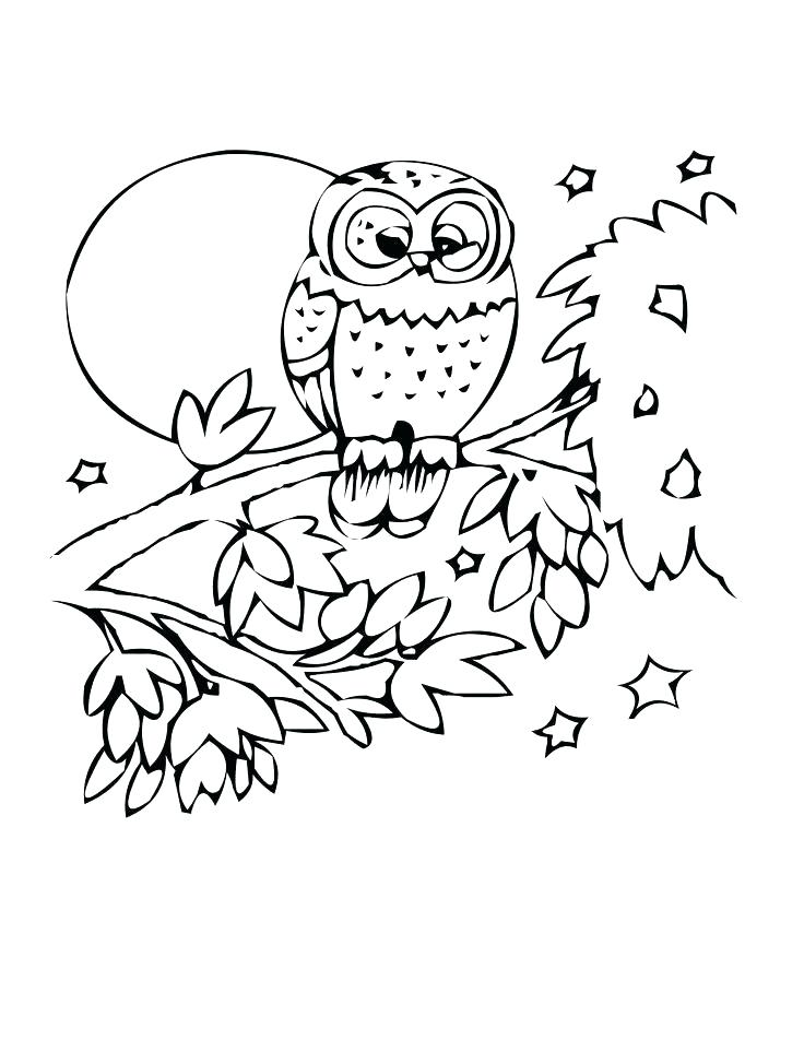 736x952 Flying Fish Coloring Page Flying Fish Coloring Page Owl Coloring