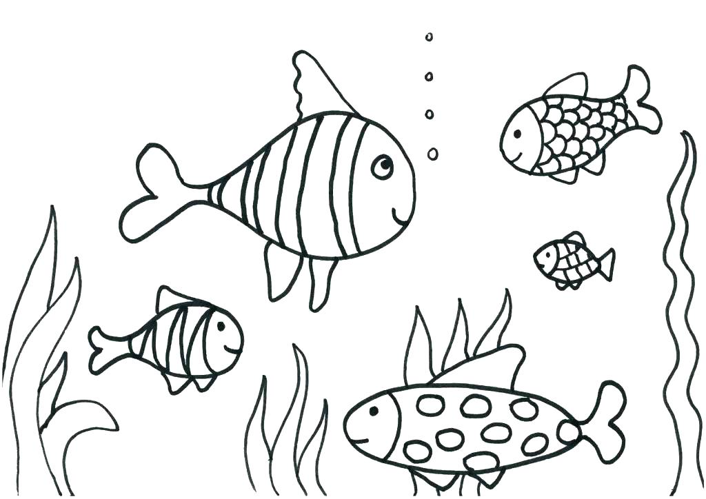 1024x724 Printable Coloring Pages Of Fish Flying Fish Coloring Page Free