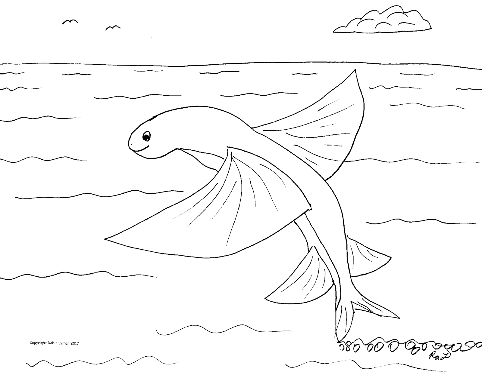 1600x1237 Robin's Great Coloring Pages Flying Fish