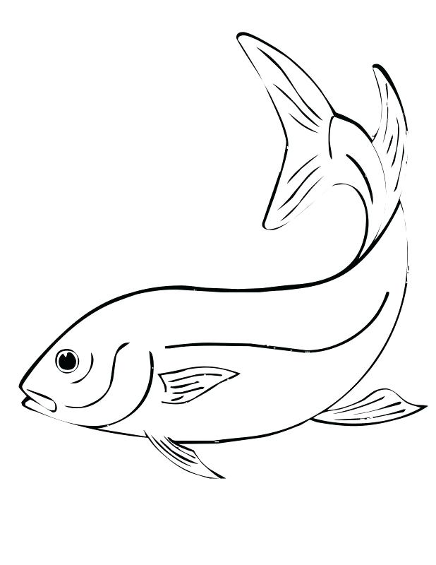 618x800 Flying Fish Coloring Page Ational Printable Fish Coloring Pages