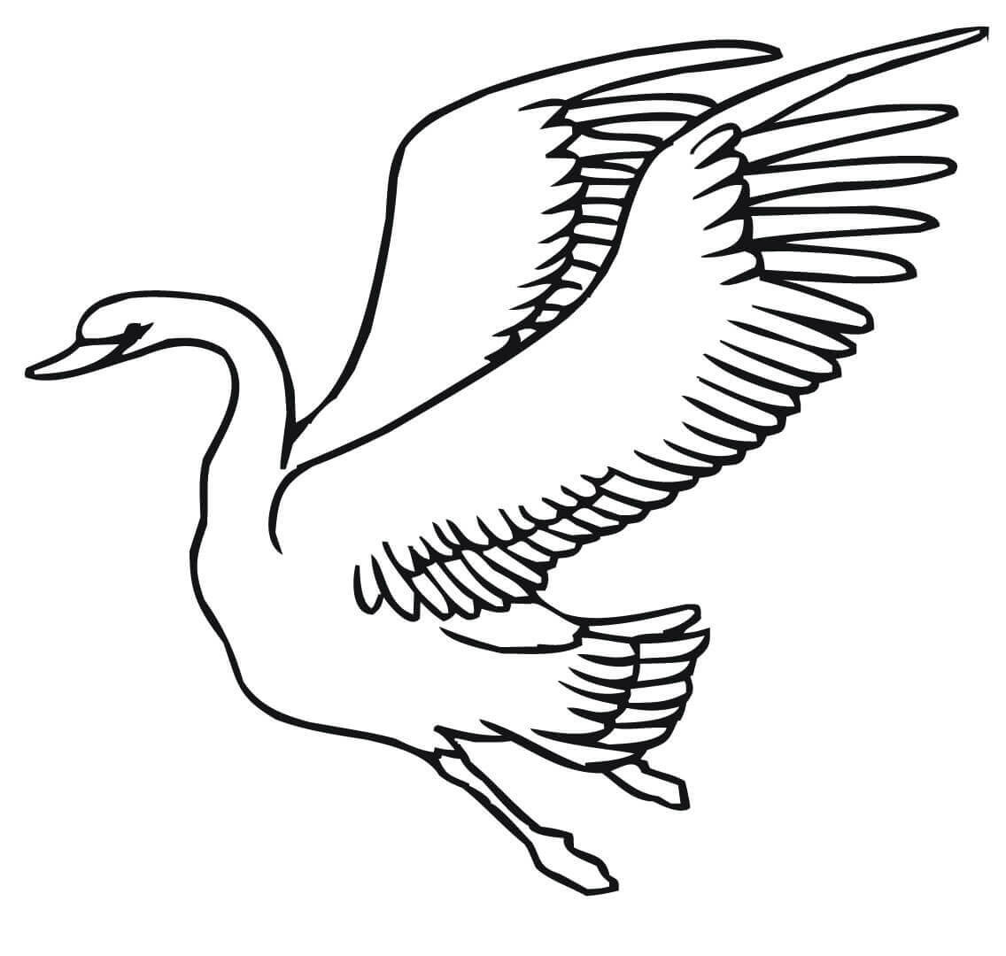 1136x1080 Flying Swans Coloring Pages
