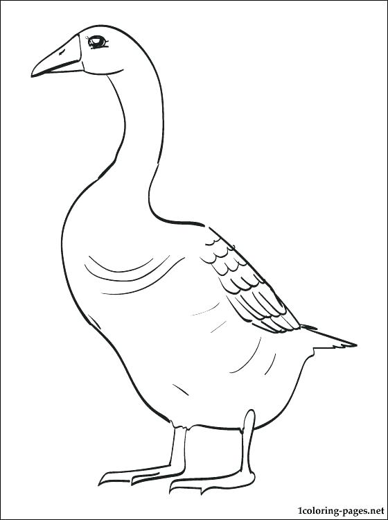 560x750 Goosebumps Coloring Pages Goose Coloring Page Goose Printable