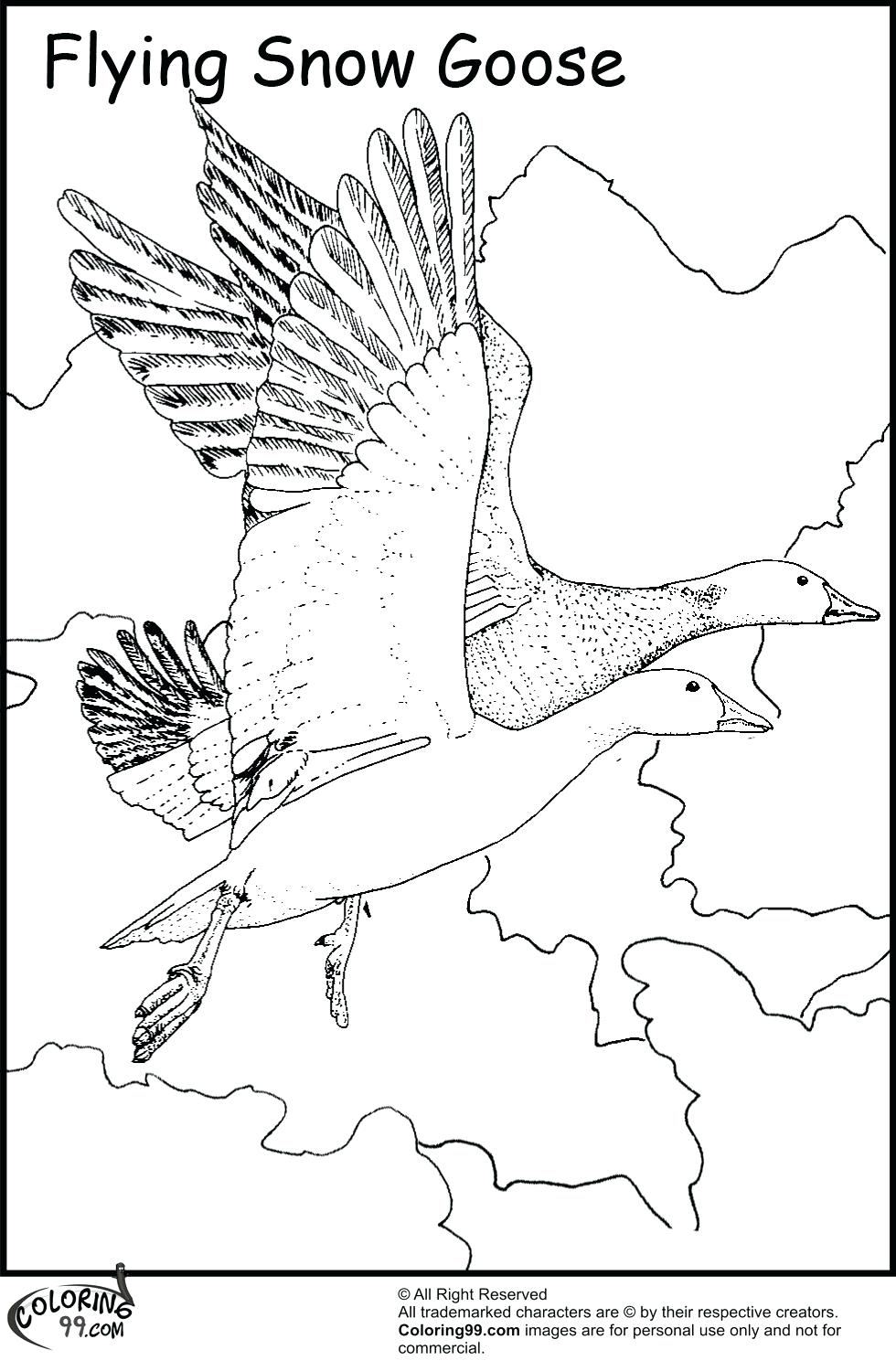 980x1500 Coloring Page Goose Coloring Page Wild Free Printable Gooses