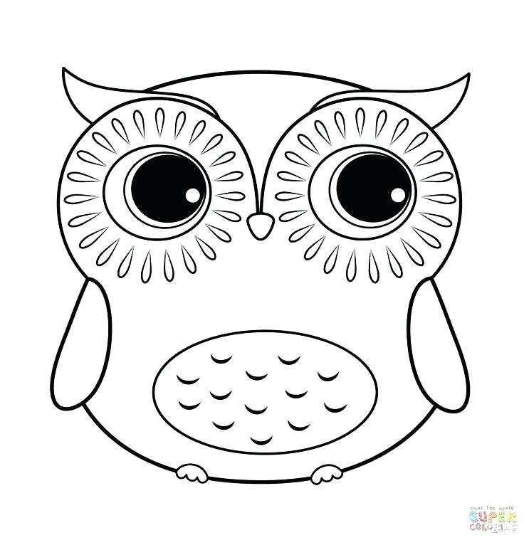 736x759 Owl Coloring Page Appealing Cute Owl Coloring Pages For Your Site