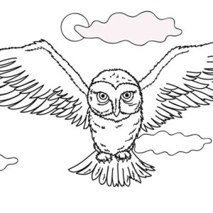 300x300 Flying Owl Coloring Page Flying Owl Coloring Page Color Nimbus